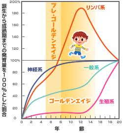 スキャモンの発育発達曲線